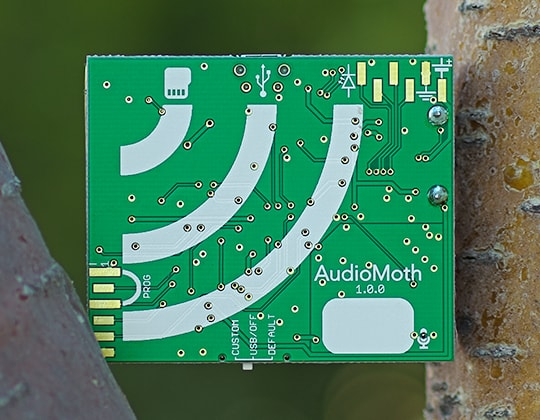 AudioMoth Round 5